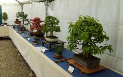 Exposition Jardins des Plantes – Mai 2009